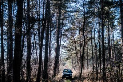 Land Rover Discovery –© Bob Van Mol